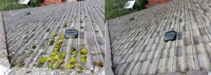 Burnaby Pressure Washing roof cleaning before and after 3