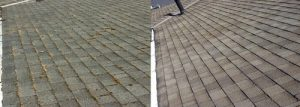 Burnaby Pressure Washing roof cleaning before and after 4